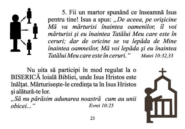 STII SIGUR 23